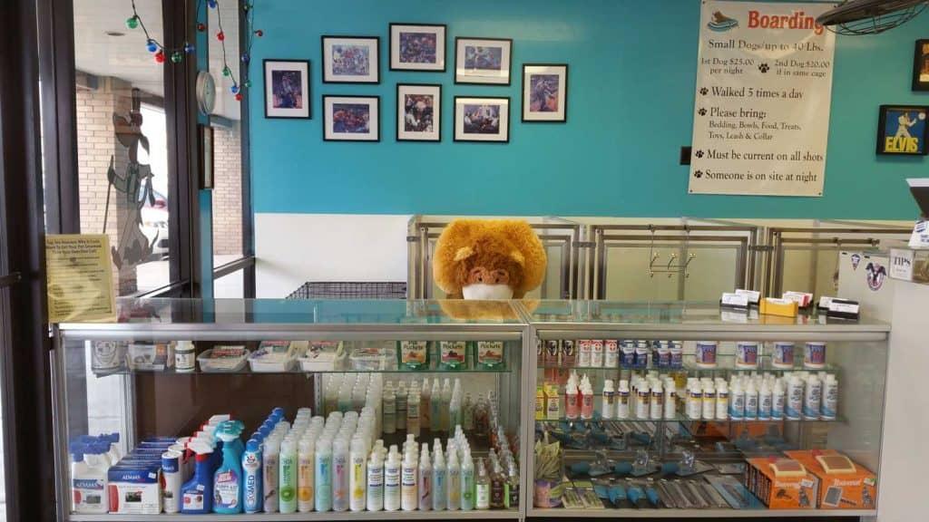 Houston Dog Grooming - Bath, Styling, & Dry - Celebrities ...